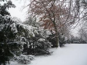 Potsdam nevada