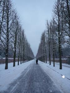 Jardines de Sanssouci