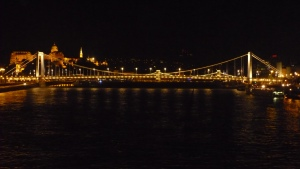 Vista nocturna del Danubio